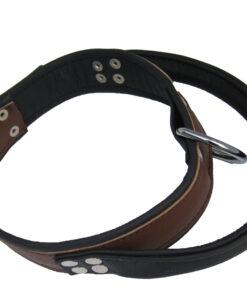 halsband dh2